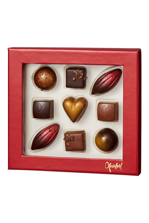 Cokolade fra Xcolatl (9 stk.)